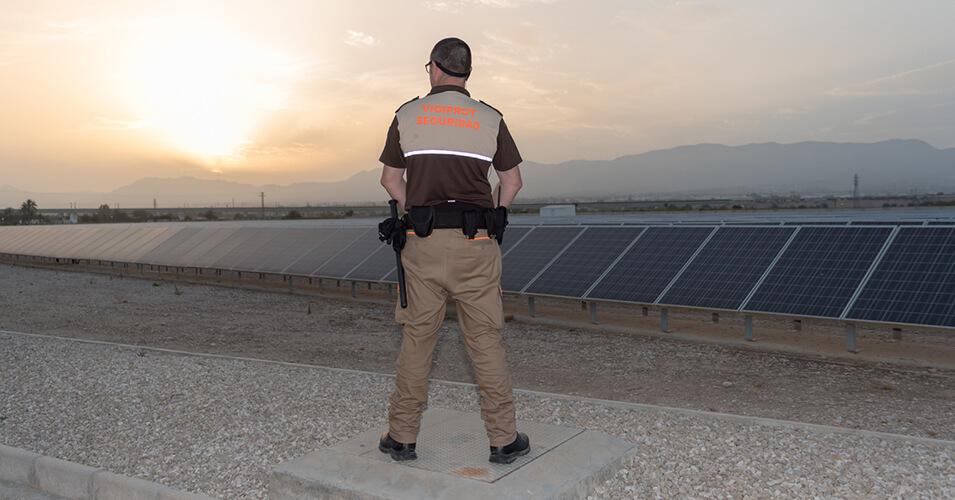 Vigilancia en huertos solares - Vigiprot
