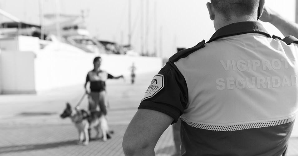 Empresa de vigilancia en Alicante - vigiprot