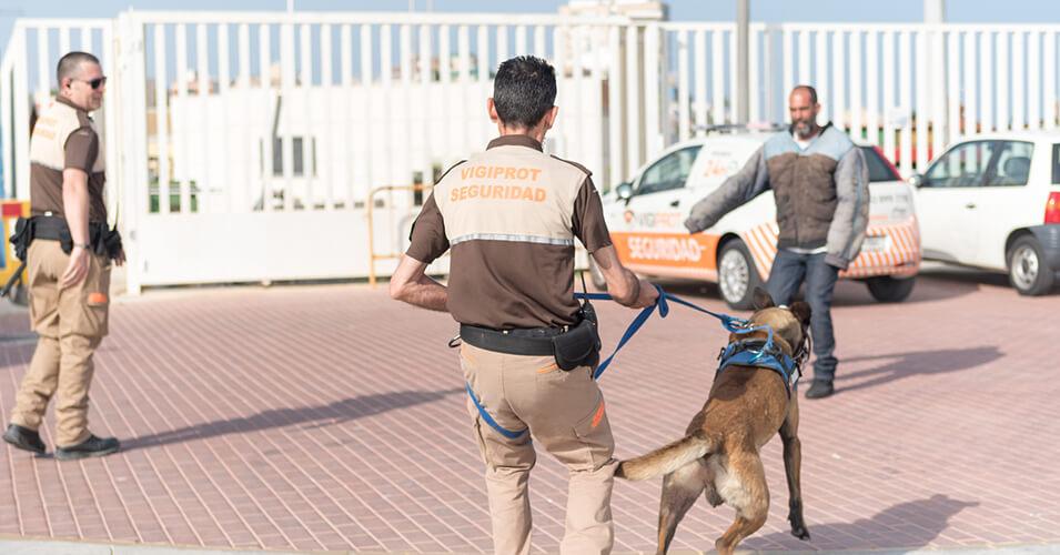 Vigilancia con perros. Unidad Canina Vigiprot.